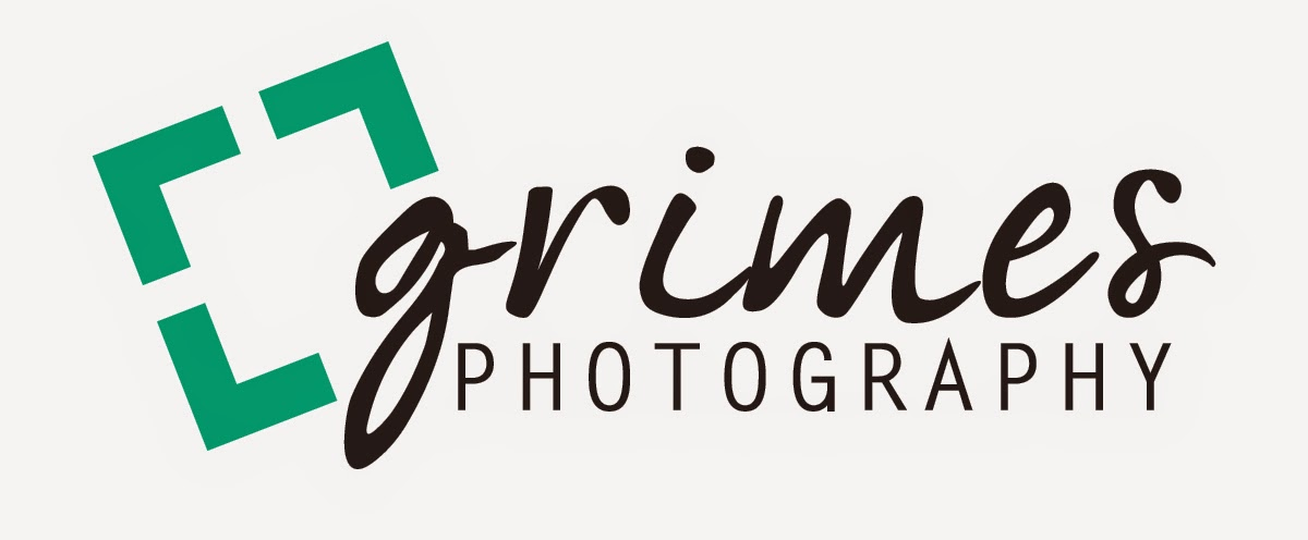 Wedding Photographer NC | Family Photographer | Greenville | Raleigh | Eastern NC